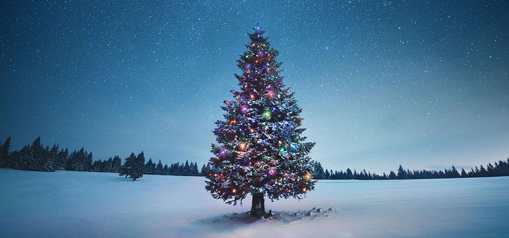 PIL toivottaa hyvää joulua ja menestyksekästä vuotta 2021!